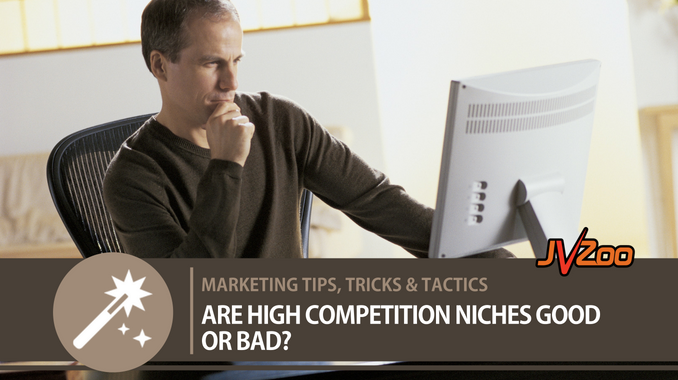 ARE HIGH COMPETITION NICHES GOOD OR BAD?